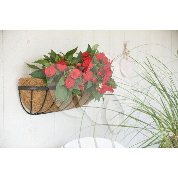 Hanging basket van smeedijzer muurmodel